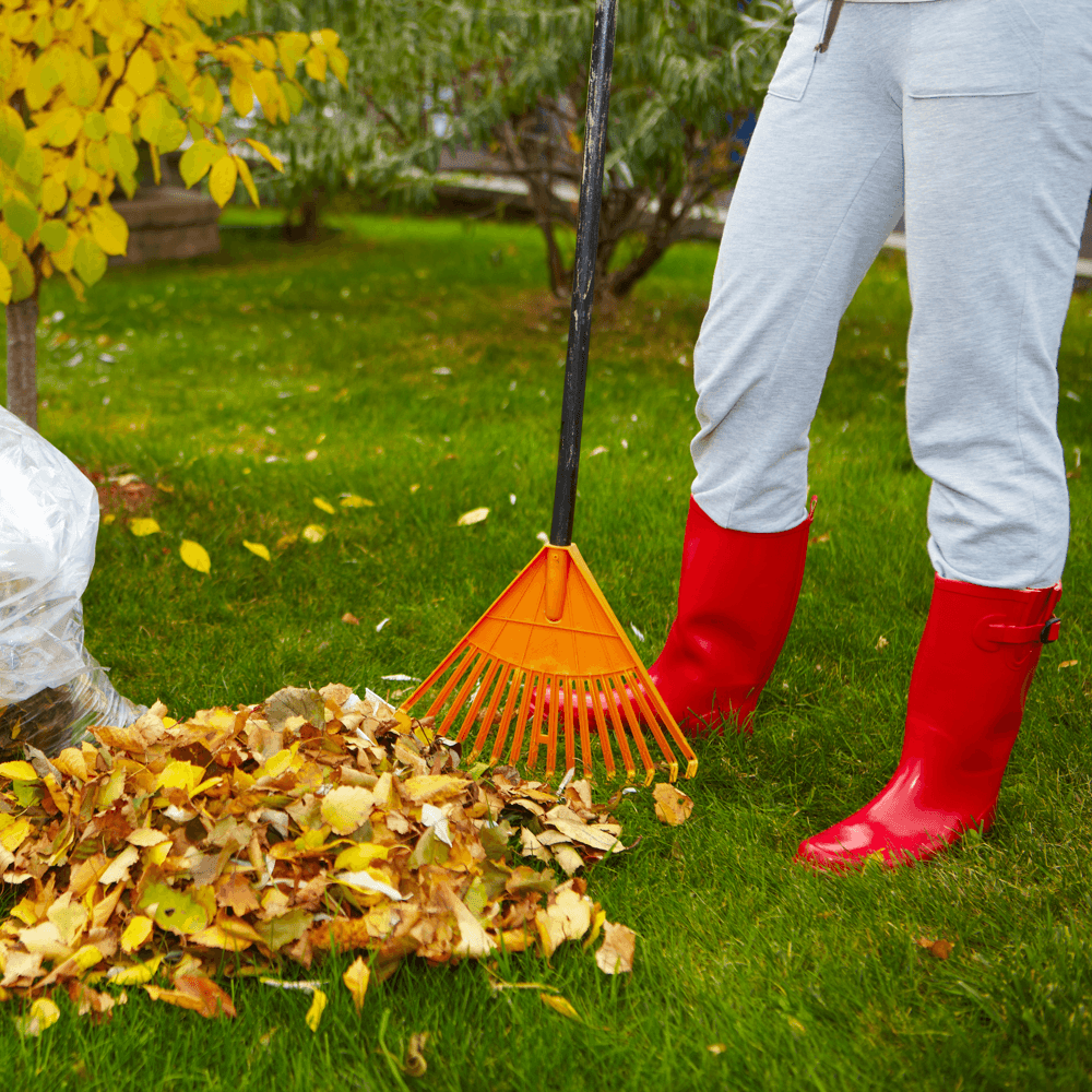 new-home-maintenance-made-easy-raking-leaves.png
