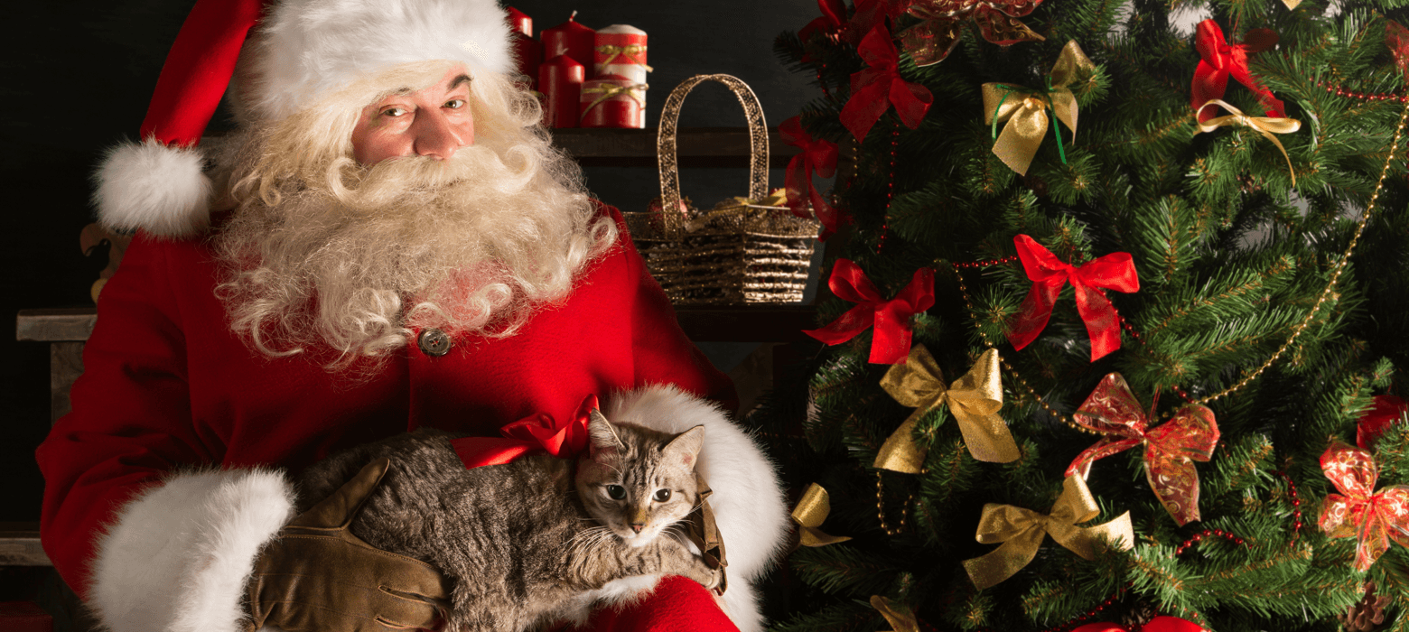 Pet Photos with Santa in Edmonton Featured Image